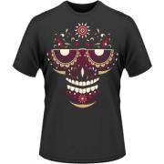 B-Skull